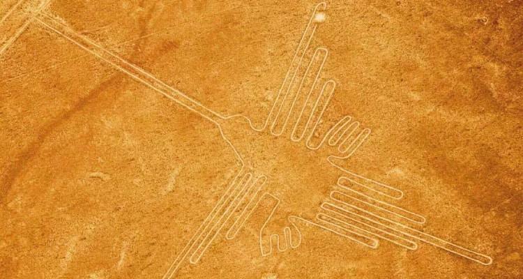 humming bird Nazca Lines Peru